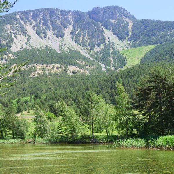 Lac des Alberts © Le Souréou